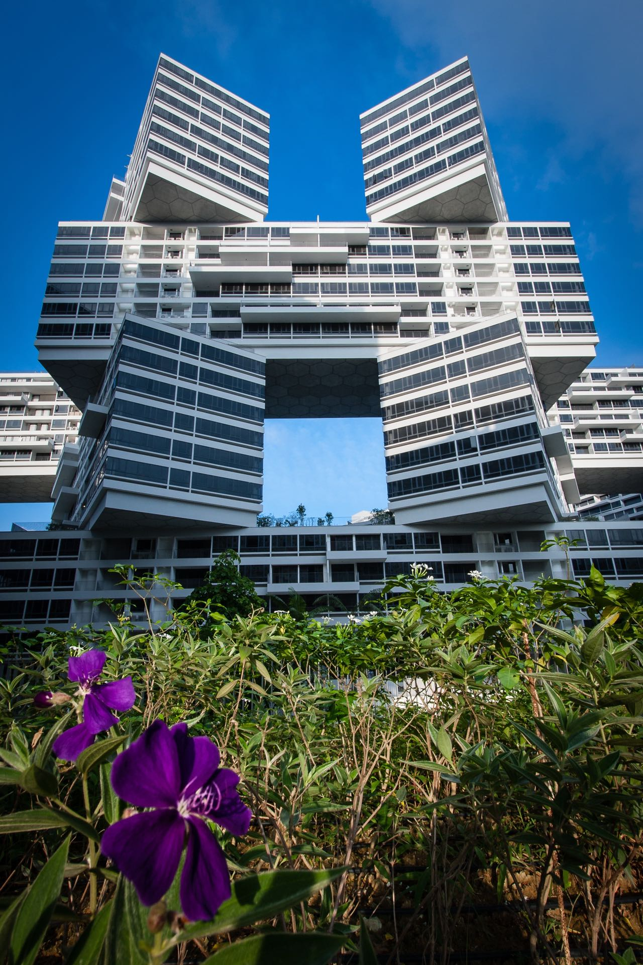 The Interlace of Singapore Wins World Building of the Year
